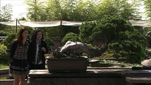 tokyo-eye-2020-michelle-chong-with-bonsai-tree-and-curator_r